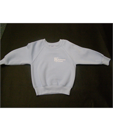Infant Light Blue Sweatshirt